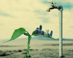 ekology